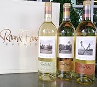 夏にぴったり!フルーティーな白ワインセット